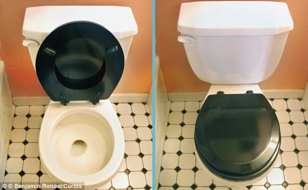 Toilet lid up or down? You can't go wrong with keeping the lid closed!