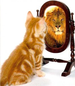 Feel Good Group - Kitten becomes a lion in the mirror